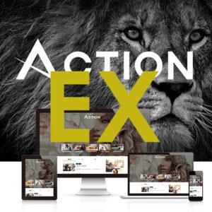 AFFINGER6 ACTION EX